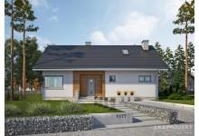 Проект LK&1177 одноэтажного дома из блоков ячеистого бетона