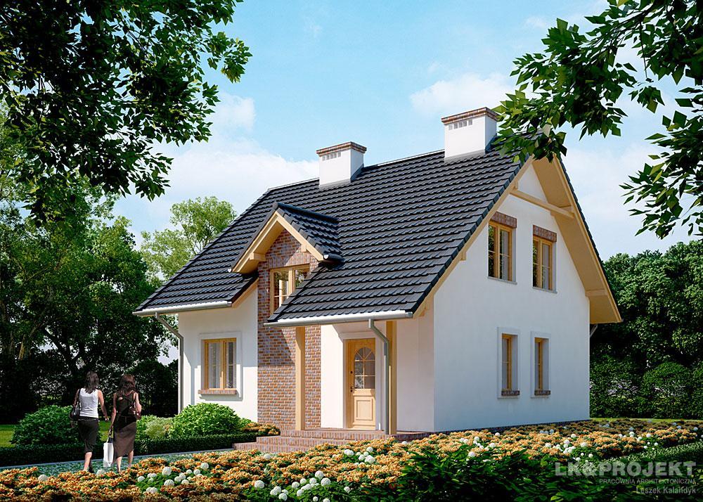 простые одноэтажные дома с мансардой проекты фото